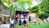 Ruinfest na Hradě Rabí 3. 6. 2017 (22 / 50)