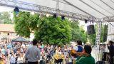 Břeclav oslavila místní zlatavý mok za zvuku hudby (39 / 131)