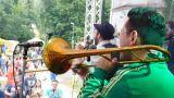 Břeclav oslavila místní zlatavý mok za zvuku hudby (40 / 131)