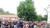Břeclav oslavila místní zlatavý mok za zvuku hudby (51 / 131)