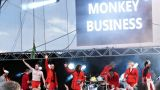 Monkey Business (73 / 122)