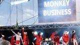Monkey Business (73 / 122)