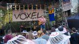 Voxel (100 / 228)