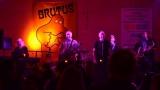 Brutus (11 / 24)