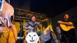 Wohnout unplugged v Hradci Králové (12 / 50)