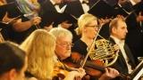 Příbramská filharmonie v zrcadlovém sále dobříšského zámku (24 / 26)