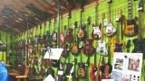 Muzeum českých elektrofonických kytar a aparatur Retro Jolana (2 / 4)