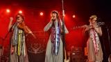 A je to tady! Jeleni zahájili svoje turné v Berouně! (14 / 121)