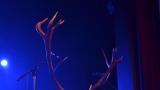 A je to tady! Jeleni zahájili svoje turné v Berouně! (41 / 121)