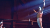 Plzeňské Depo 2015 tančilo v rytmu Monkey Business (41 / 46)