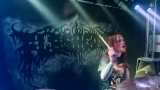Fleshgore (43 / 77)