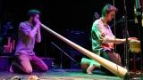 kapela Baobab (61 / 72)