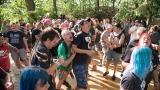 Vlčtejnský Prasofest zaznamenal rekordní návštěvnost (71 / 252)