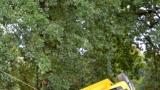 Létofest 2018 rozzářil deštivý víkend v Plzni (66 / 95)