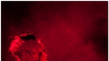 Frankenstein ožil silvestrovskou noc v Rock Opeře. (13 / 77)