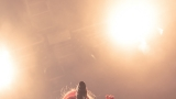 Morčata na útěku (49 / 130)