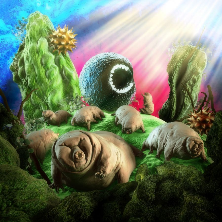 Recenze: nové album INTRACELLULAR PETS kapely Hentai Corporation