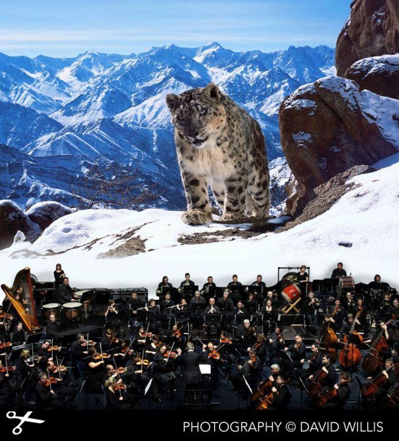 Zázračná planeta II – Live in Concert
