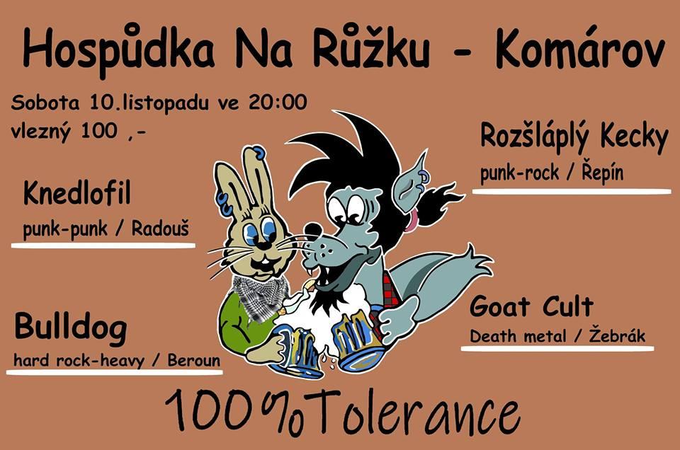 Na hudebním festivalu 100% Tolerance se představí čtyři kapely.
