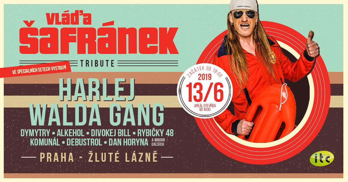 Vláďa Šafránek Tribute aneb velká koncertní vzpomínka na výrazný rockový hlas