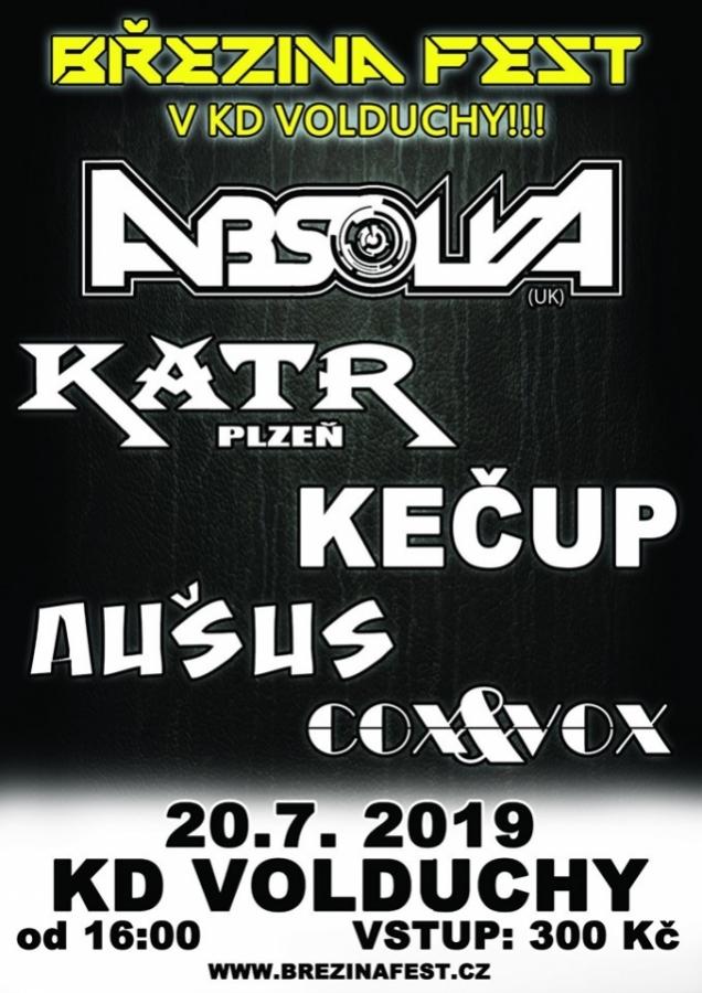 Letošní Březina Fest 2019 netradičně v KD Volduchy!