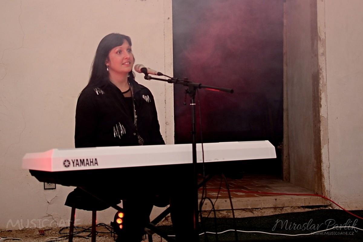 Koncert na podporu zámku v Rožmitále pod Třemšínem