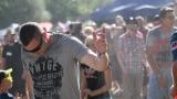 festival fans (3 / 141)