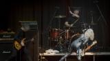 Suzi Quatro se svou Rock And Roll basou vyprodala velký sál Lucerny v Praze. (23 / 31)