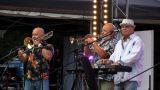 Framus Five oslavil padesátiny ve velkém stylu, festivalem Krásný ztráty pod věžemi konopišťského zámku (20 / 75)