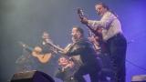 Rumba Flamenca Camargue z jižní Francie v podání Gipsy Kings (57 / 76)