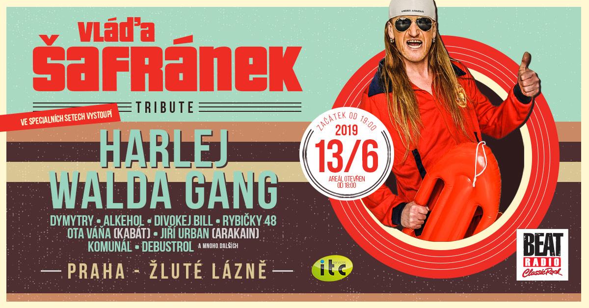Vláďa Šafránek Tribute – již tento čtvrtek velká koncertní vzpomínka na výrazný rockový hlas ve Žlutých lázních v Praze, 13. 6. 2019