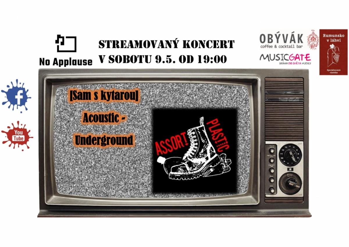 Sam s kytarou - acoustic underground a Asort Plastic - agropunk.